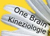 One Brain - kineziologie
